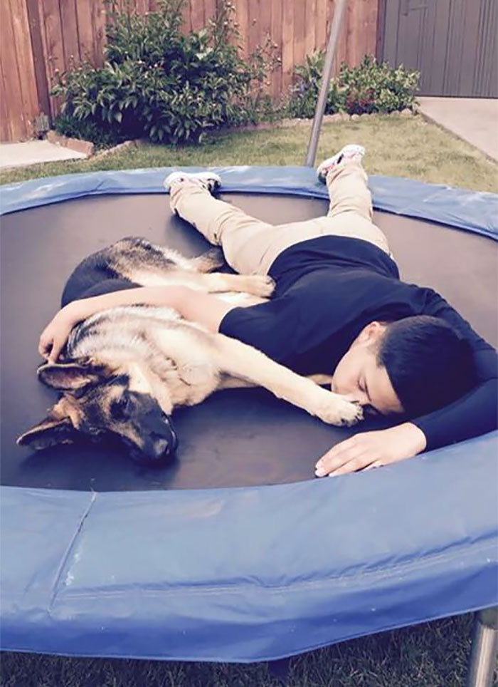Perro salva la vida de su amo