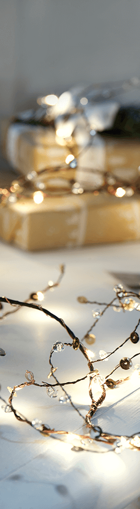 Cox and Cox Jewelled Twig Light Up Garlands