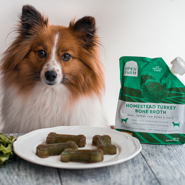 Frozen Dog Greenies Treats