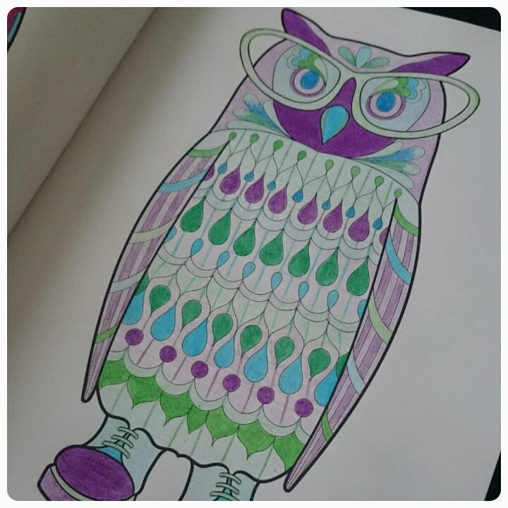 owl picture, colouring in