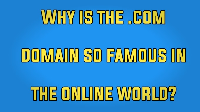 Why is the .com domain so famous in the online world?