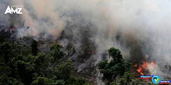 7 fatos para entender a crise das queimadas na Amazônia Até Aqui