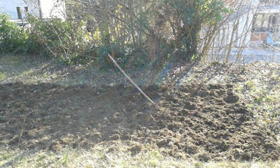 Febbraio nell'orto di Elle e Alli: seminiamo le patate