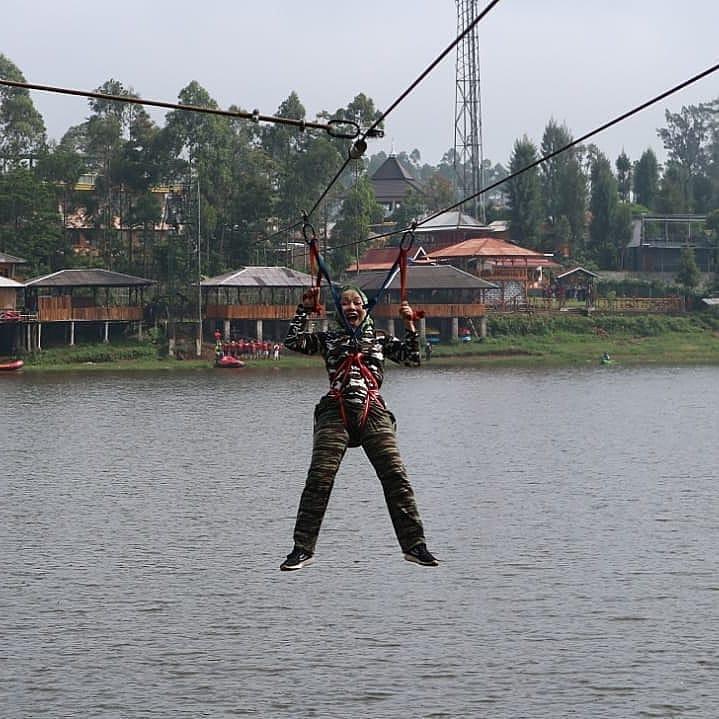 flyingfox gravity