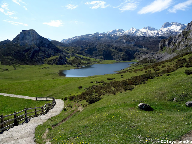 Terminamos ruta en el Lago la Ercina.
