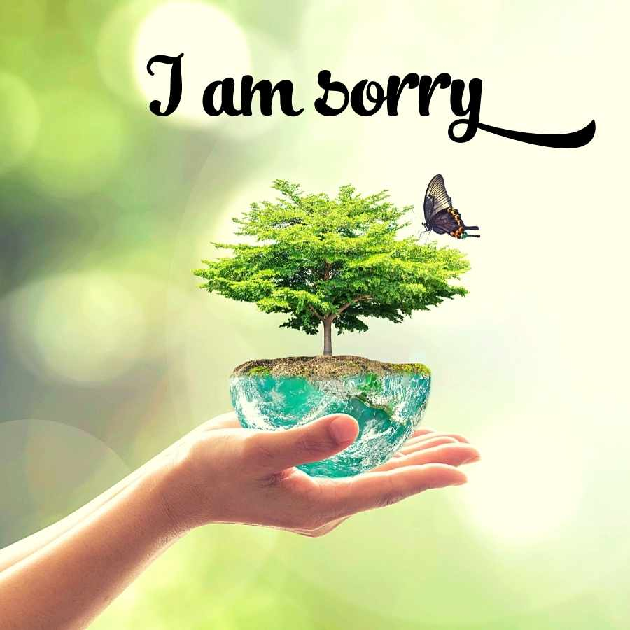 cute sorry images