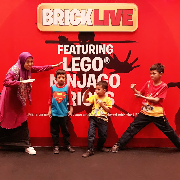 Great Family Adventure in BRICKLIVE