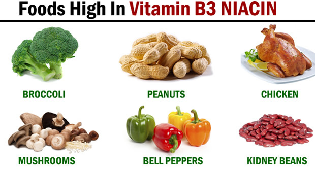 Foods high in vitamin B3 niacin