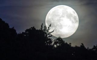 memancing saat bulan purnama