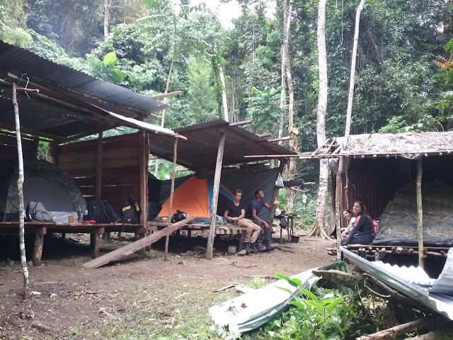 Basecamp for rainforest birding tour in Manokwari