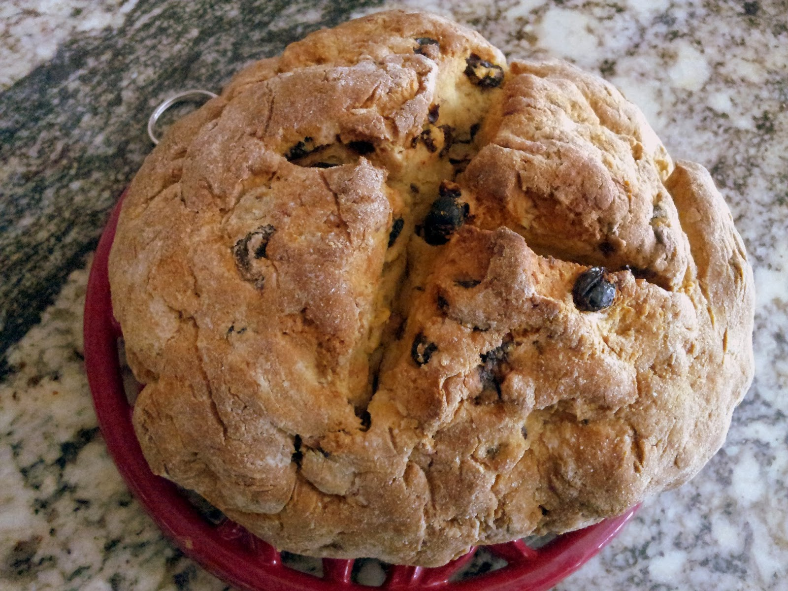 ... Fiori Favoriti: Happy St. Patrick's Day! Gluten Free Irish Soda Bread