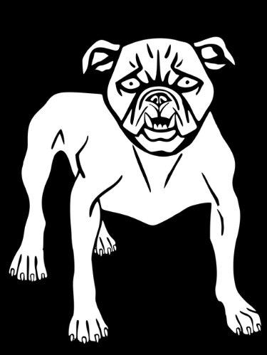 An Angry Dog