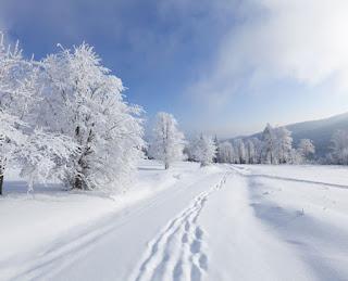 تفسير مشاهدة سقوط الثلج في الحلم