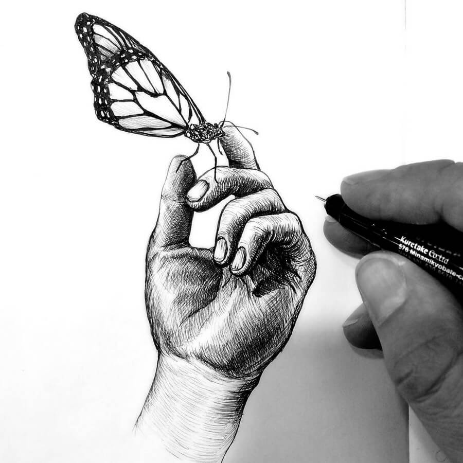 05-Monarch-Butterfly-Tim-Ingle-Nature-Drawings-www-designstack-co