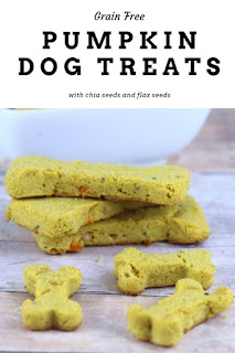 This easy dog treat recipe is grain free with coconut flour. This is great if your dog has allergies or a wheat intolerance. It has pumpkin, peanut butter, chia seeds,  flax seeds, and coconut oil. It has no egg and no flour. Get step by step instructions for this flourless homemade healthy dog treat. Your dog will be happy with these home made DIY all natural soft treats. #dogtreat #recipe #pumpkin #grainfree