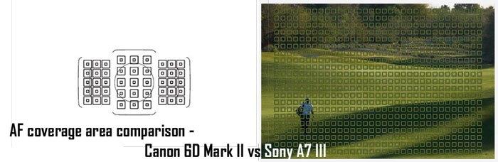 Сравнение точек автофокуса у Sony A7 III и Canon EOS 6D Mark II