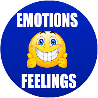 emotions status in spanish, How do you say different feelings in Spanish, emotions in Spanish, feelings in Spanish, Adjectives in Spanish, how many adjectives are there in Spanish, describing words in Spanish