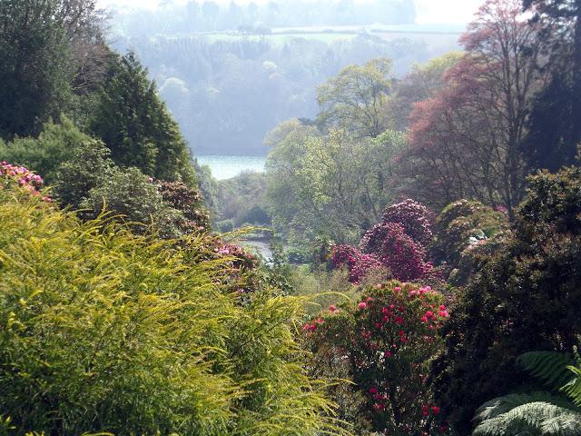 Cornwall, Trebah, Gardens