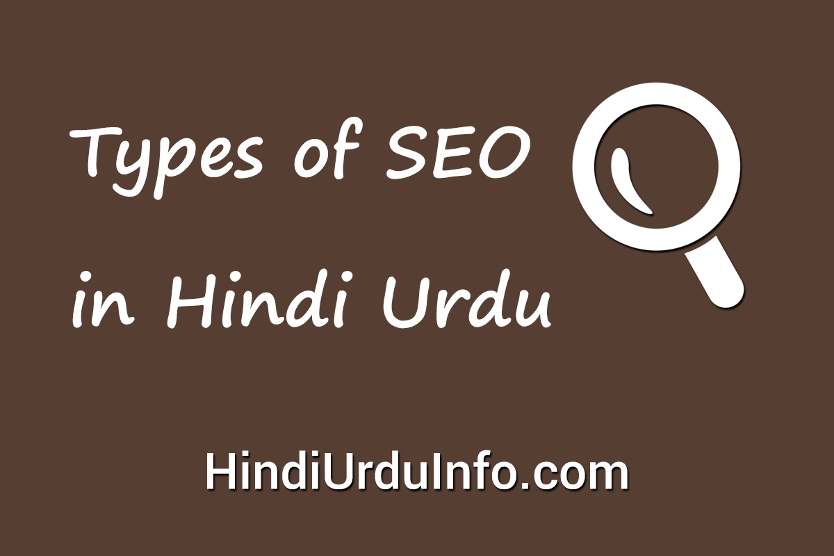 types-of-seo-in-hindi