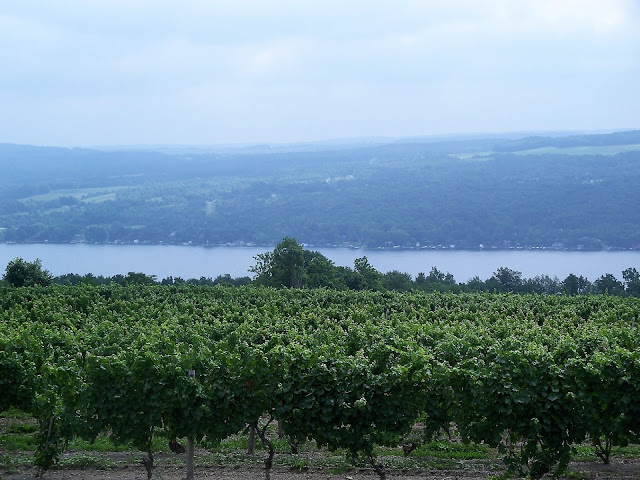 Keuka Lake wineries Finger Lakes