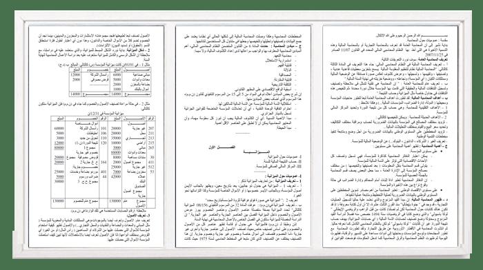 محاضرات في مقياس المحاسبة للسنة الأولى جامعي علوم اقتصادية وعلوم تجارية