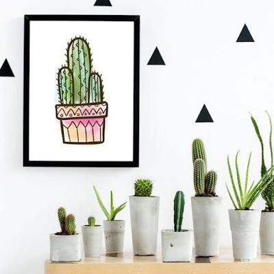 Cactos na decoração: mais de 50 fotos para te inspirar