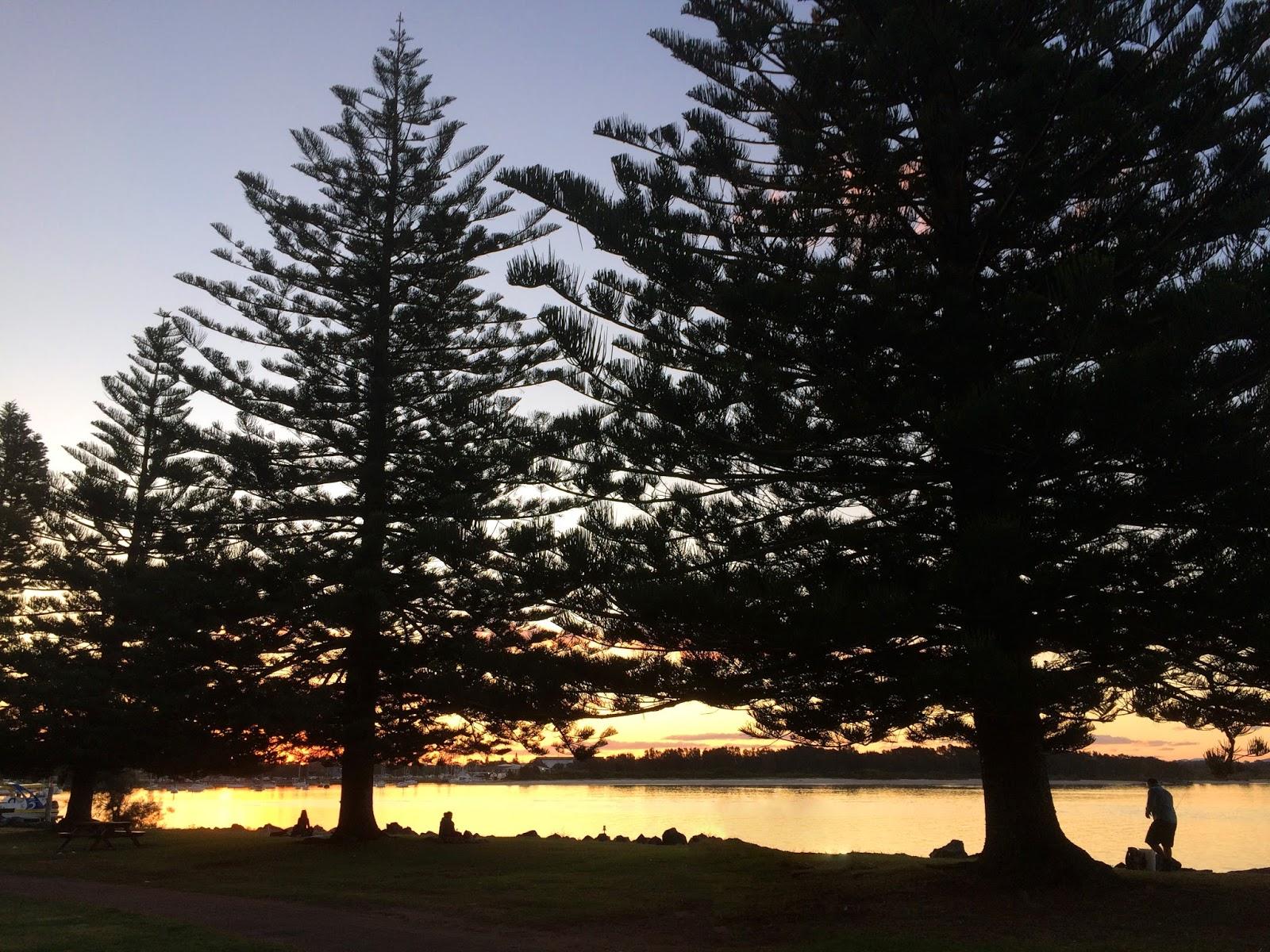 Sunset town green Port Macquarie