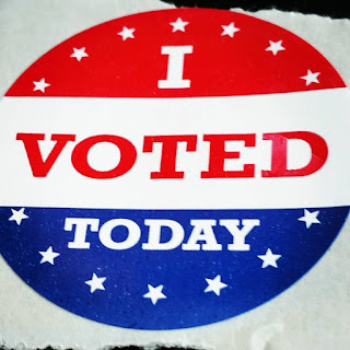 7 Reasons Why I Voted Early | Navigating Hectivity By Micki Bare
