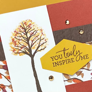 Stampin' Up! Beauty of the Earth Mini DSP Explosion Card + VIDEO ~ www.juliedavison.com #stampinup