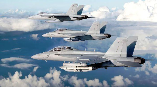 Super Hornet dan Growler