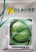 peluang bisnis, jual benih hibrida, harga promo, toko pertanian, online, lmga agro