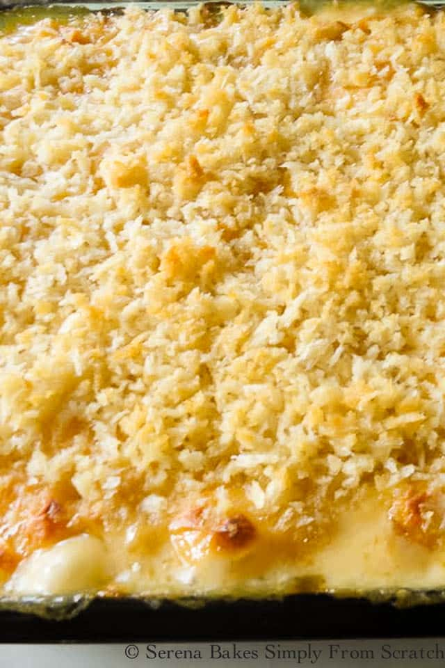 The BEST Baked Macaroni and Cheese. It's super cheesy and creamy with a crunchy panko topping for an ultimate Thanksgiving or Christmas Side Dish recipe from Serena Bakes Simply From Scratch.