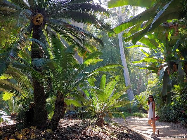 Los Angeles Botanic Garden