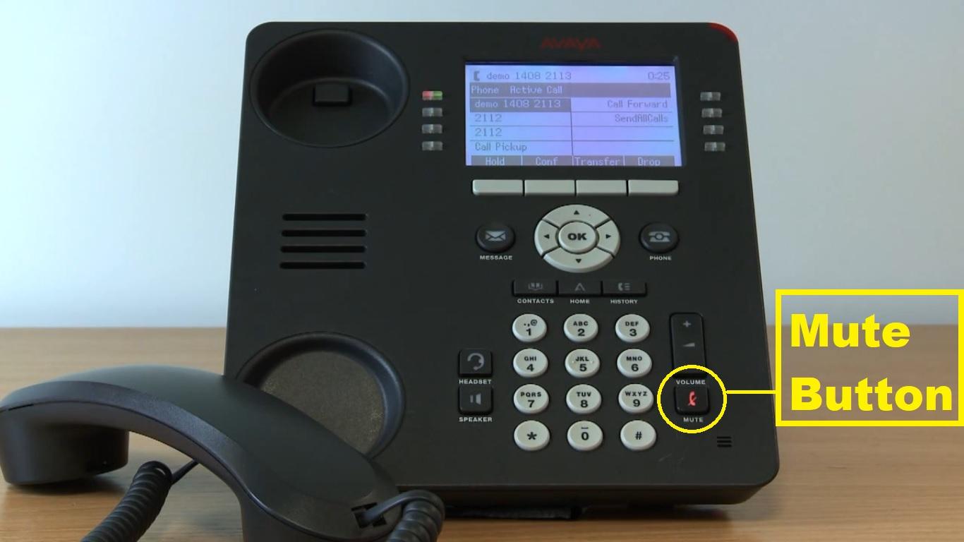 Avaya Phone mute button