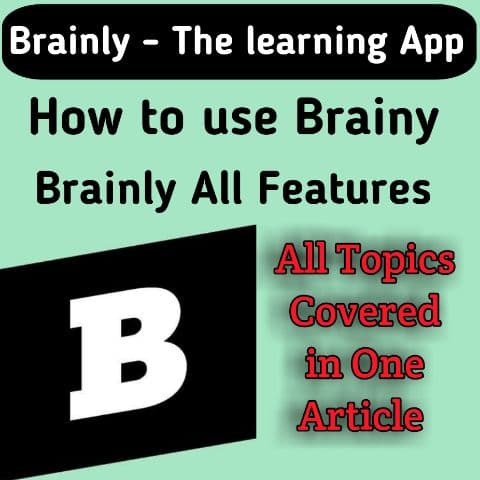 brainly the learning aap, brainly app
