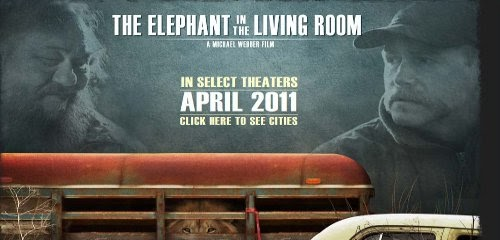 the elephant in the living room reveals both sides of 47578