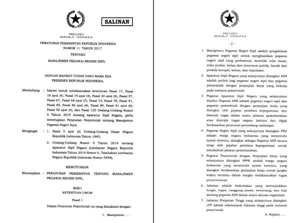 Peraturan Pemerintah Nomor 11 Tahun 2017 tentang Manajemen Pegawai Negeri Sipil