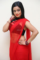 Aasma Syed in Red Saree Sleeveless Black Choli Spicy Pics ~  Exclusive Celebrities Galleries 082.jpg