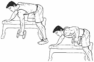 1. One Arm Dumbbell Rows