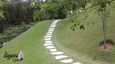 Iniciando o caminho de pedra no jardim sendo com pedra tipo cacão de São Tomé com junta de grama e iniciando a escada de pedra também com pedra cacão de São Tomé com juntas de grama em casa em condomínio na serra da Cantareira.