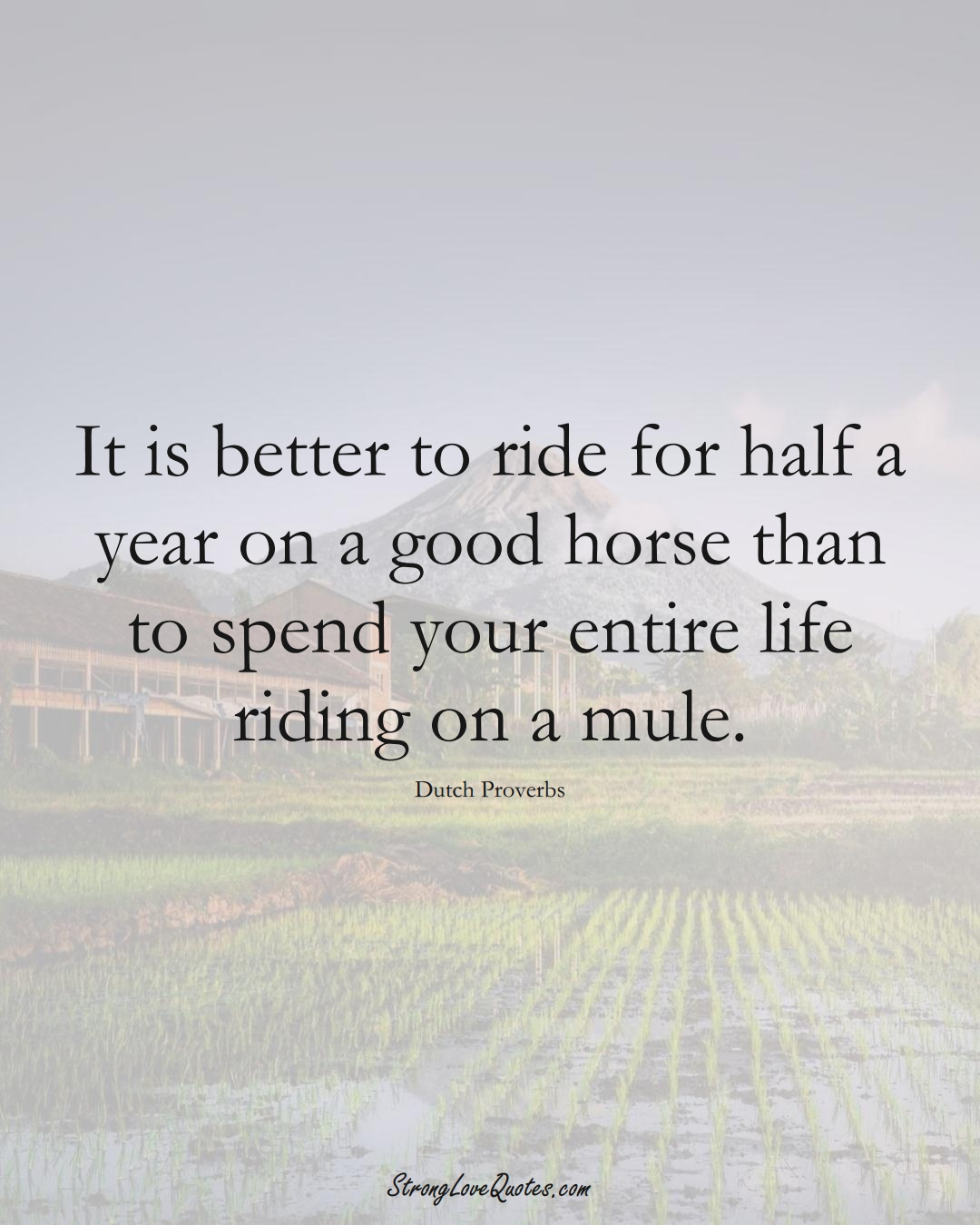 It is better to ride for half a year on a good horse than to spend your entire life riding on a mule. (Dutch Sayings);  #EuropeanSayings