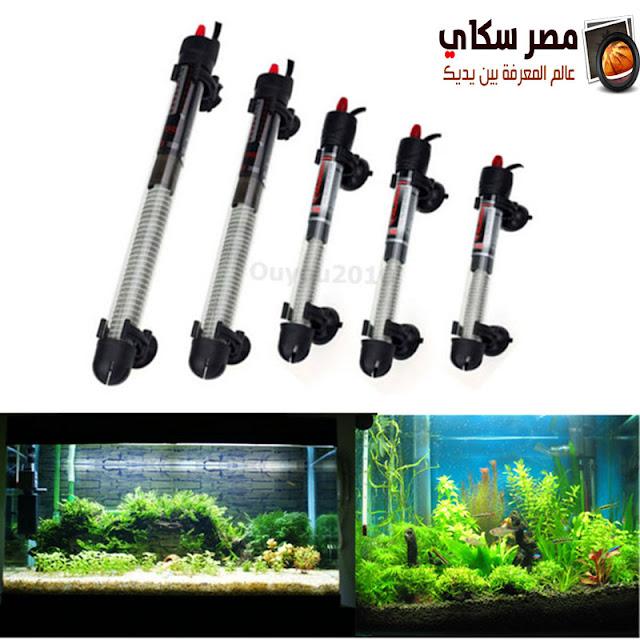 أنواع أحواض أسماك الزينة والمعدات اللازمة Types of aquarium