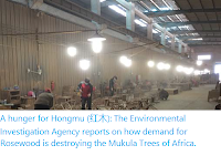 https://sciencythoughts.blogspot.com/2019/12/a-hunger-for-hongmu-environmental.html