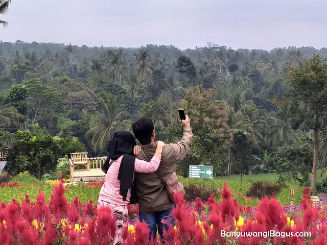 selfi di agrowisata Taman Suruh