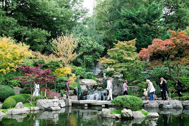 London, londres, blog, street, kensington,Holland park, kyoto garden, jardin japonais, automun, fall in london