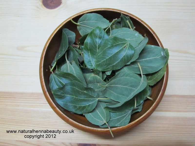 Herbal Remedies in Islaam: Sidr in Islaam