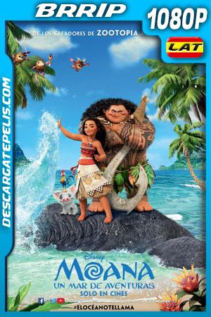Moana: Un mar de aventuras (2016) 1080p BRrip Latino – Ingles
