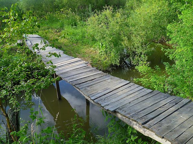 Новосибирская область, Жеребцово – река Издревая