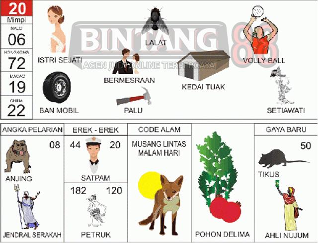 20 = Istri Sejati, Lalat, Bola Voli, Ban Mobil, Bermesraan, Palu, Kedai Tuak, Setiawati