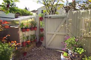Frances Tophill garden